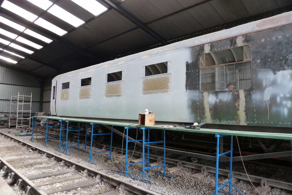 27162 in partial primer